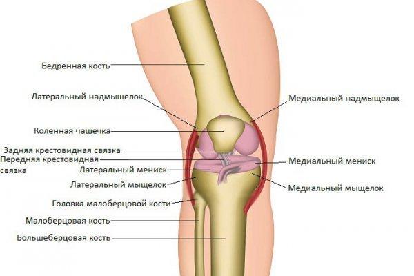 Переломы латерального мыщелка бедренной кости