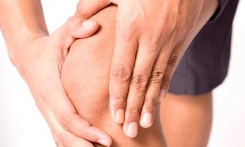 Применение гирудотерапии при артрозе суставов