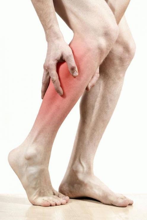 Анатомия мышц, управляющих стопой