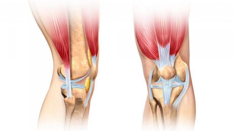 картинки складок колена сих пор
