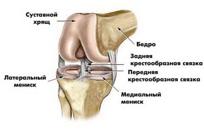 Показания и техника проведения артродеза суставов